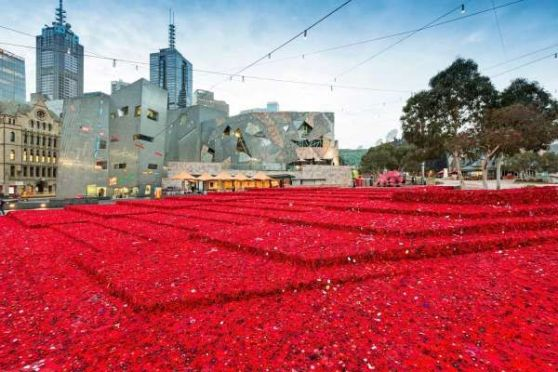 Poppies_in_Fed_Square